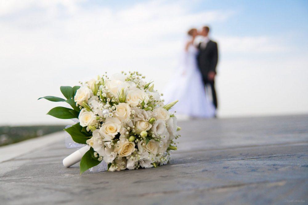 Вийти заміж за американця: з ким одружуються на Тернопільщині