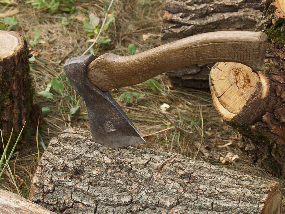 У Бучацькому районі під час вирубки лісу загинув 64-річний чоловік
