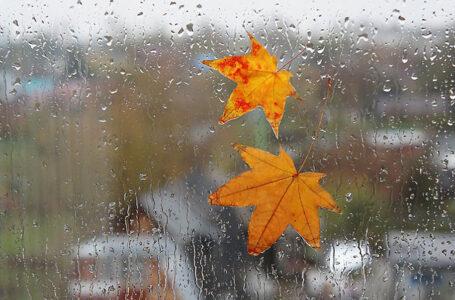 Погода на Тернопільщині: грози, шквальний вітер та різке похолодання