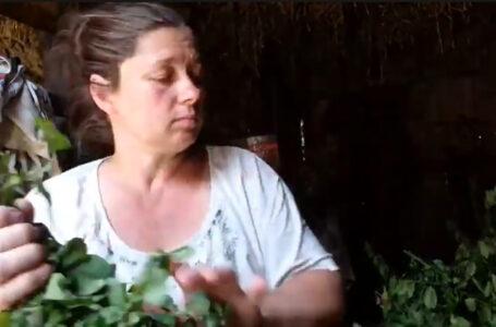 На Тернопільщині жінка зробила з кіз героїнь блогу (ВІДЕО)