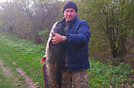 Житель Ланівців спіймав рибу заввишки з людину та вагою у 26 кг (ФОТО)