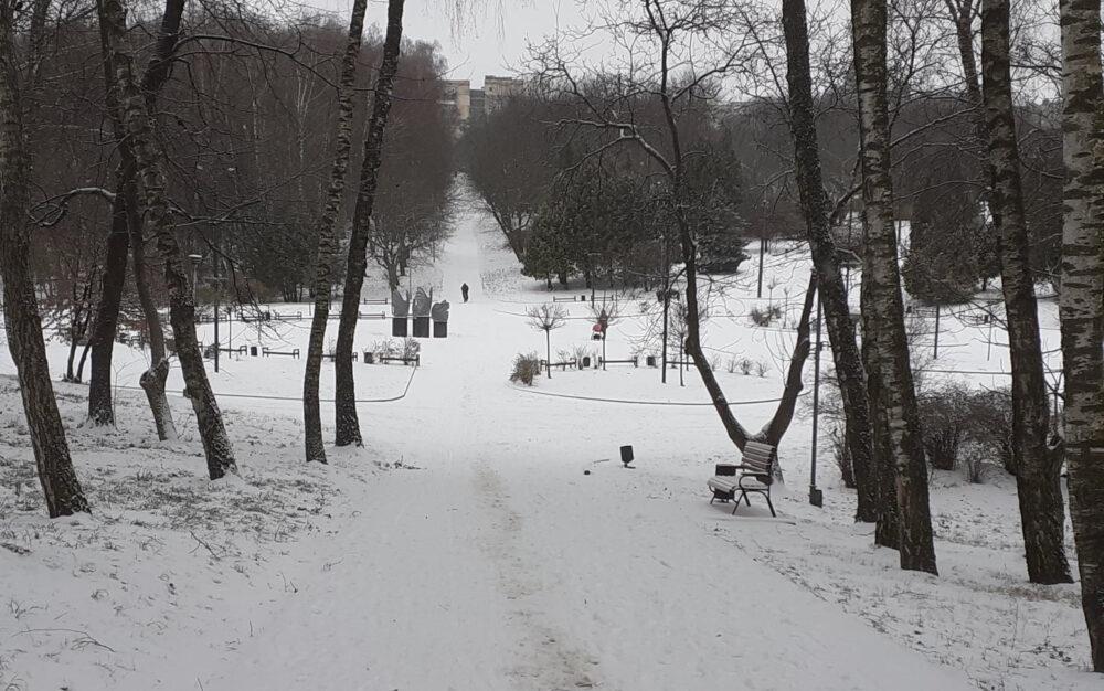 Без паніки: у поліції розповіли, хто і на кого нападає у парках Тернополя