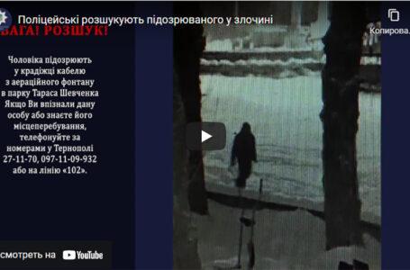 Поліція просить допомогти знайти чоловіка, який вкрав кабель з аераційного фонтану (ВІДЕО)