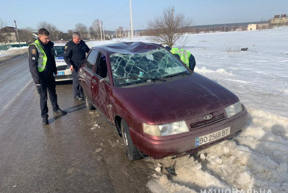 На Кременеччині п'яна дівчина викрала автомобіль свого товариша і потрапила в аварію (ФОТО)