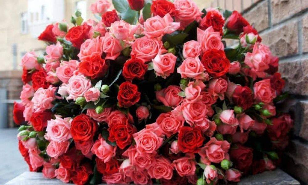 Троянди і шахрайство: у Заліщиках під час купівлі саджанців жінка втратила 50000 гривень