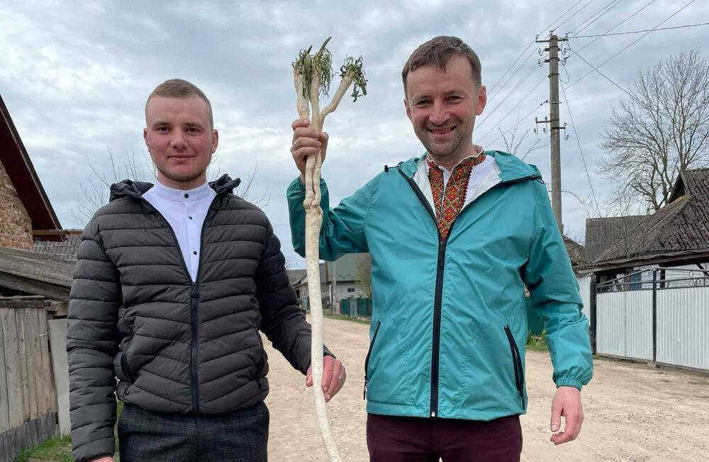На Тернопільщині викопали майже двометровий хрін (ФОТО)