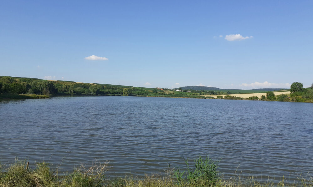 На Теребовлящині втопилися 16-річний юнак та 50-річний чоловік