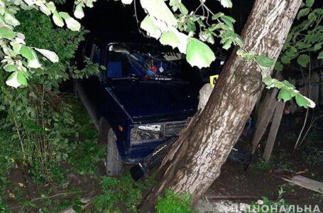 Заїхали в дерево: в аварії на Борщівщині травмувався 16-річний юнак